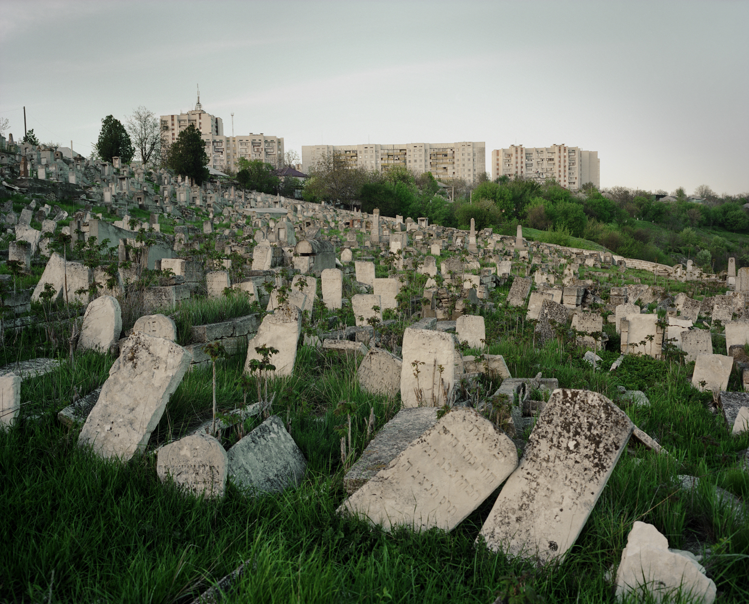 Jewish cemetery by the border of Ribnica.